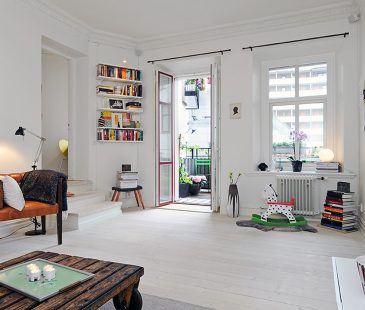 Scandinavian styleThree RoomApartment