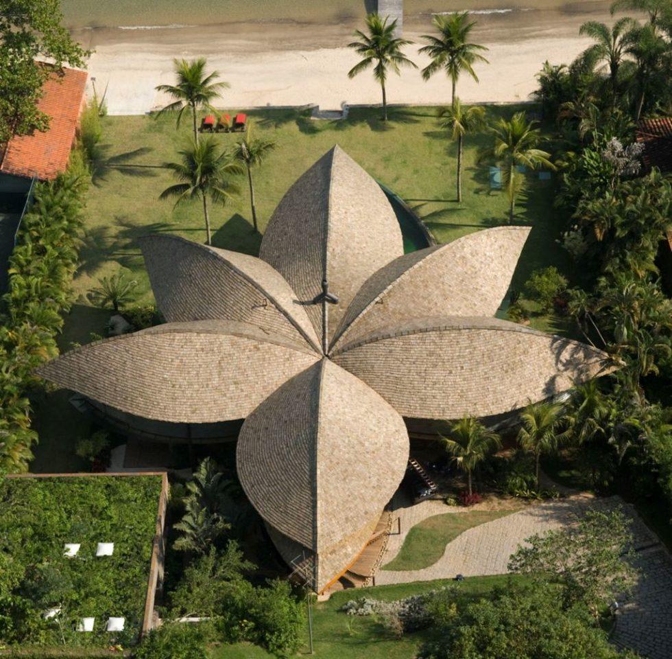 Leaf House - Brazilian Flower