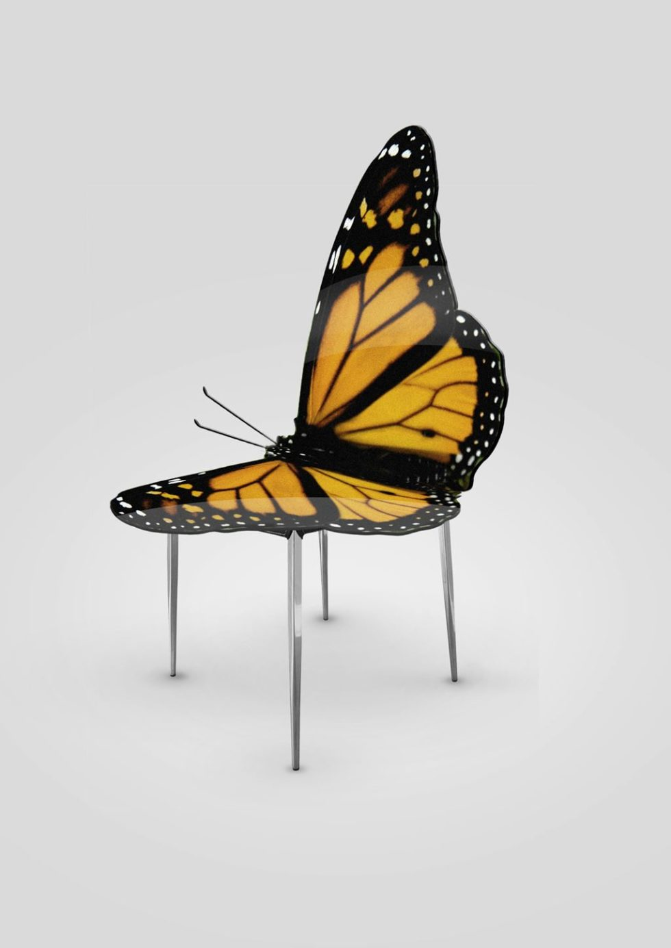 Chair butterfly - Greetings from Flower