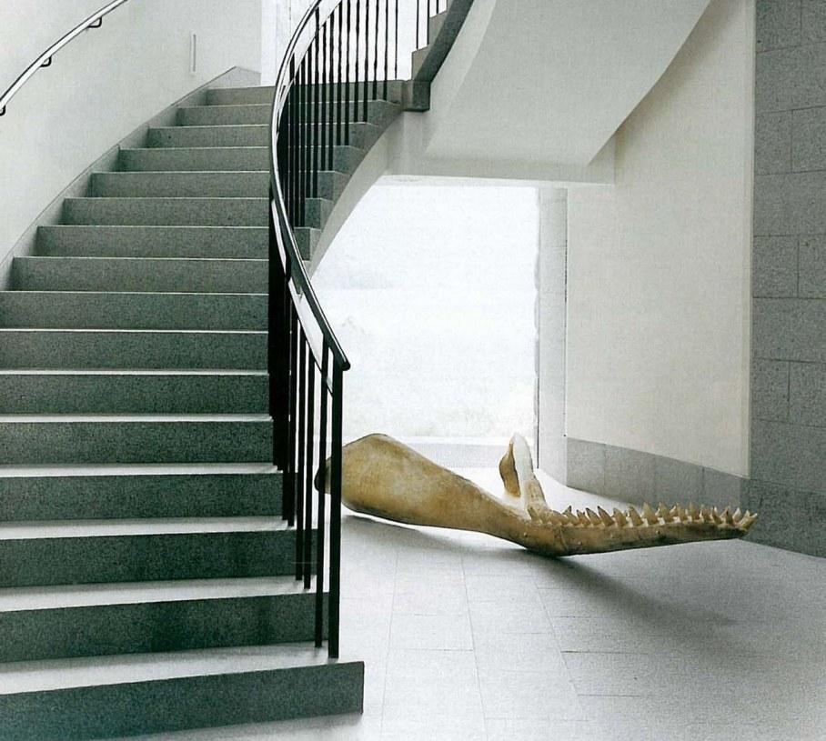 Highland Lodge - Staircase - a sperm whale jawbone