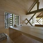 Alpine Barn Apartment from OFIS Architects