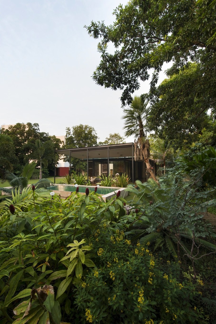 Energy-Saving Itzimna House in Mexico - Garden and swimming pool