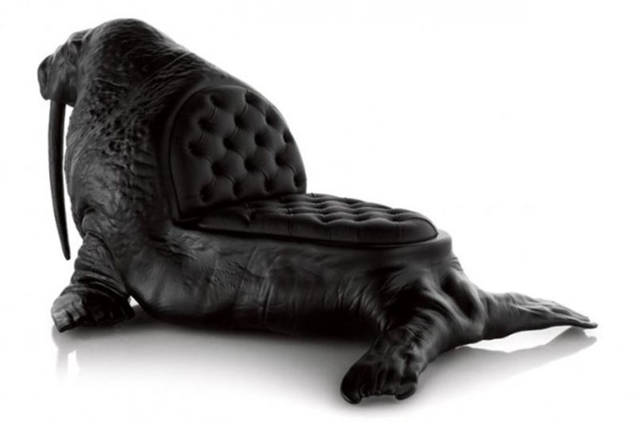 chair walrus 2