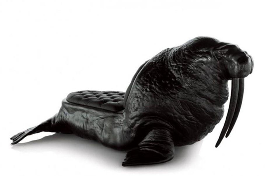 chair walrus