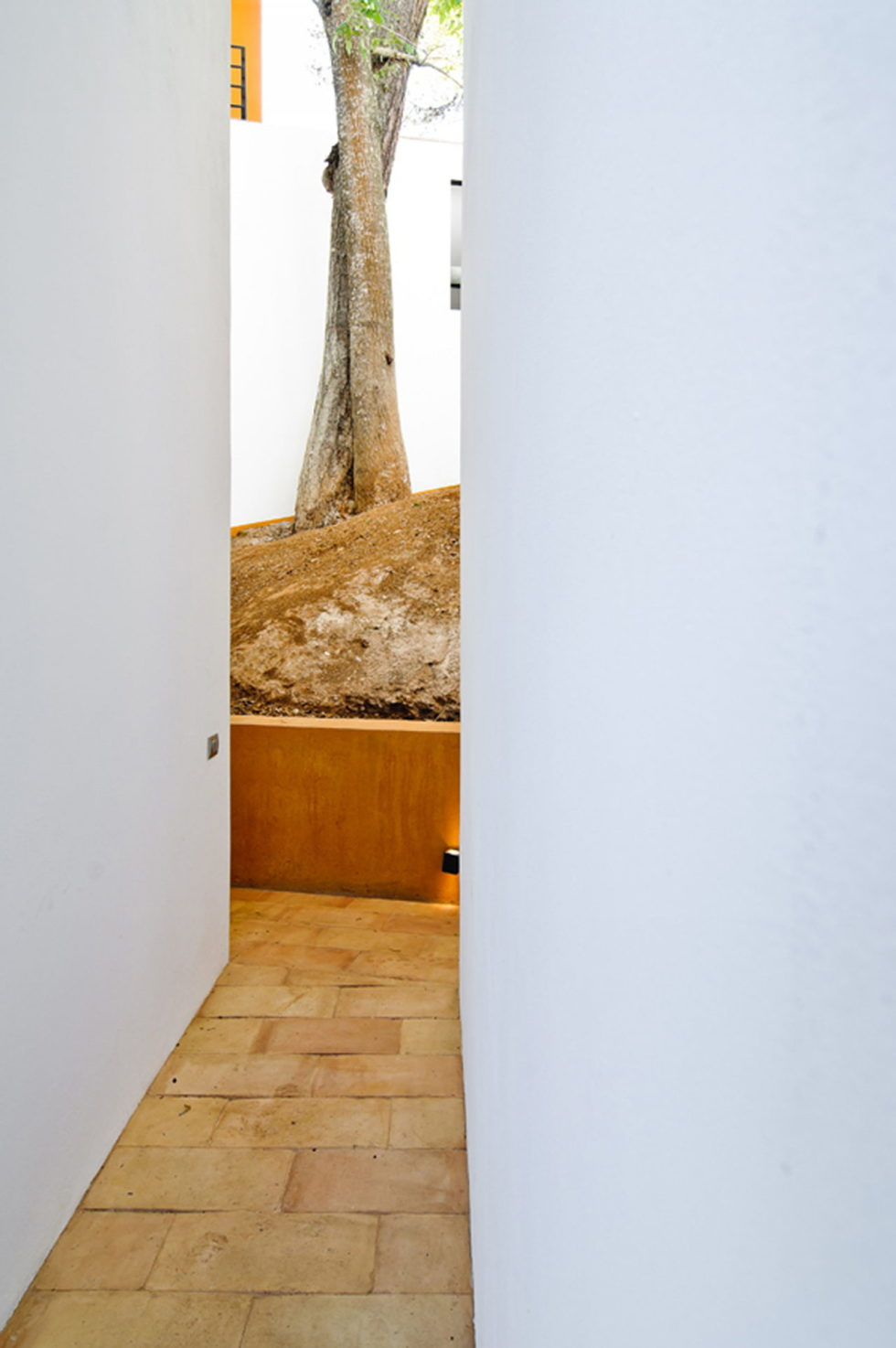 La Lagartija Energy-Efficient Residency in Mexico 25