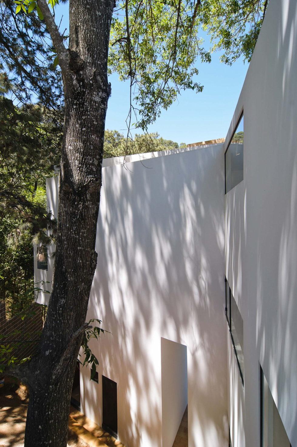 La Lagartija Energy-Efficient Residency in Mexico 8