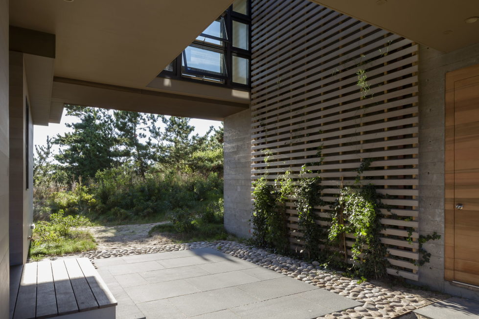 The country house on the sand dunes of Cape Cod, United States 8