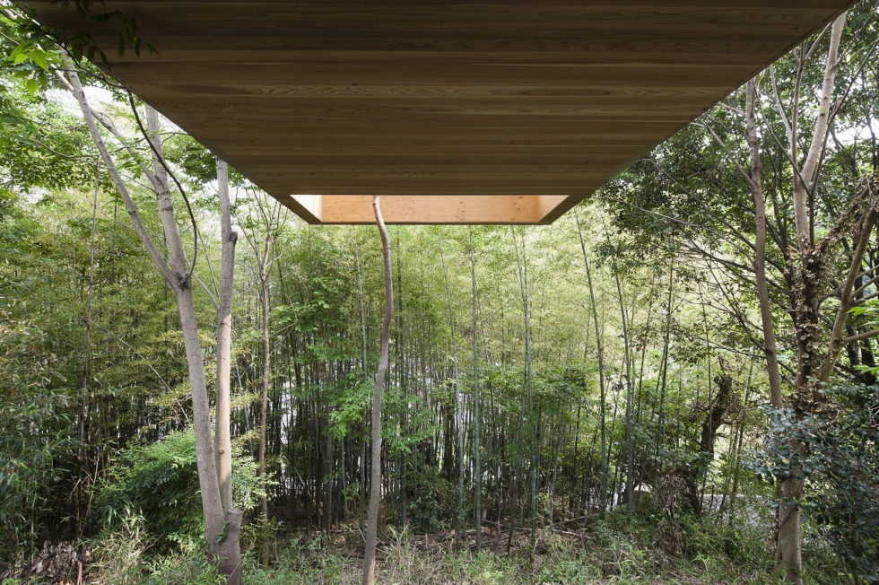 The pendulous over the forest house '+ node' from the UID Architects 3
