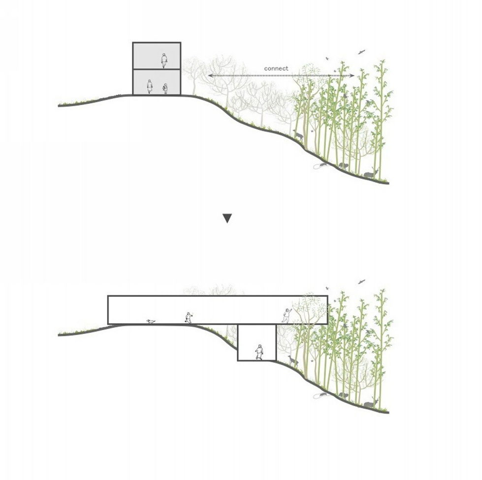 The pendulous over the forest house '+ node' from the UID Architects - Plan 2