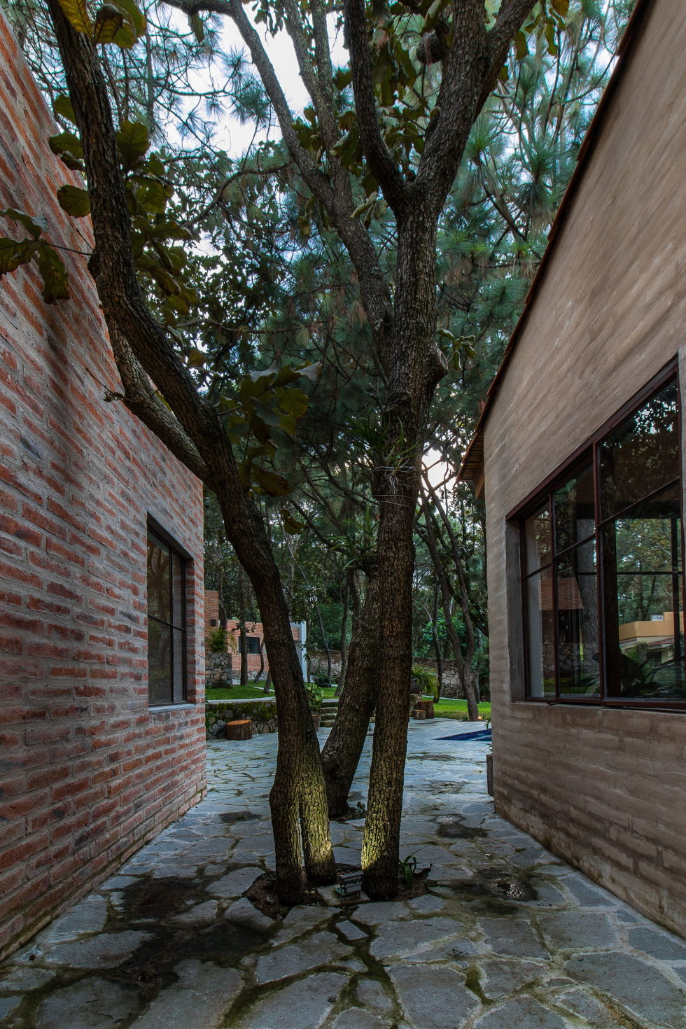 Two-Storeyed House Surounded By The Pictiresque Forest in Mexico From MO+G taller de arquitectura 4