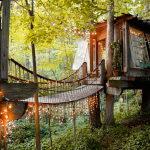 Uniquehouse hotelonthetreebytheprojectofPeterBahouth