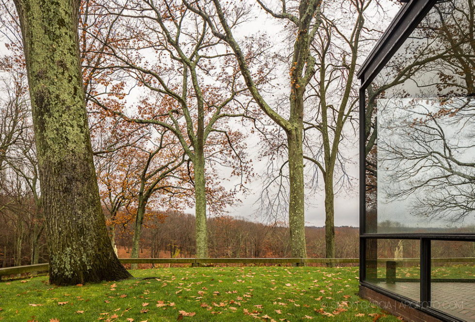 The Glass House in Connecticut 4