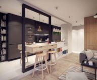 Designing project of the stylish apartments in Lodz 10