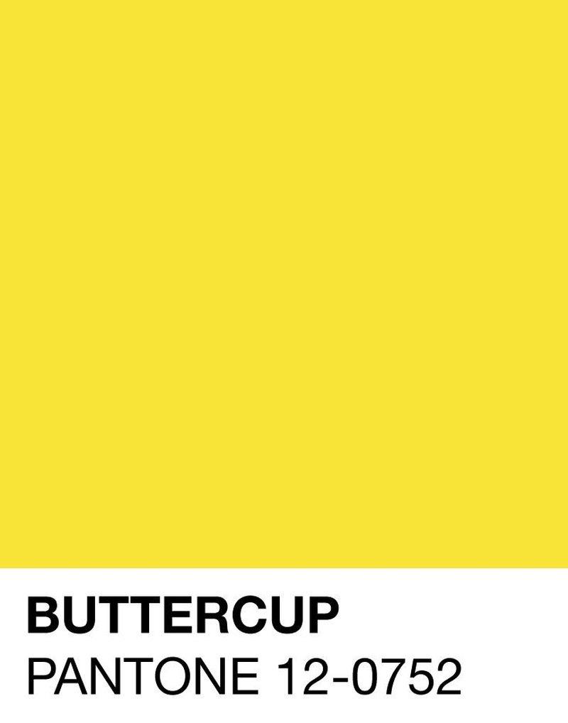 buttercup-pantone