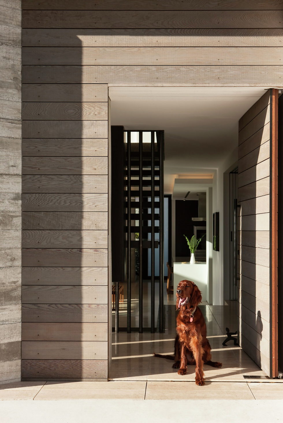 out-of-town-villa-in-new-zealand-upon-the-project-of-daniel-marshall-architects-studio-2