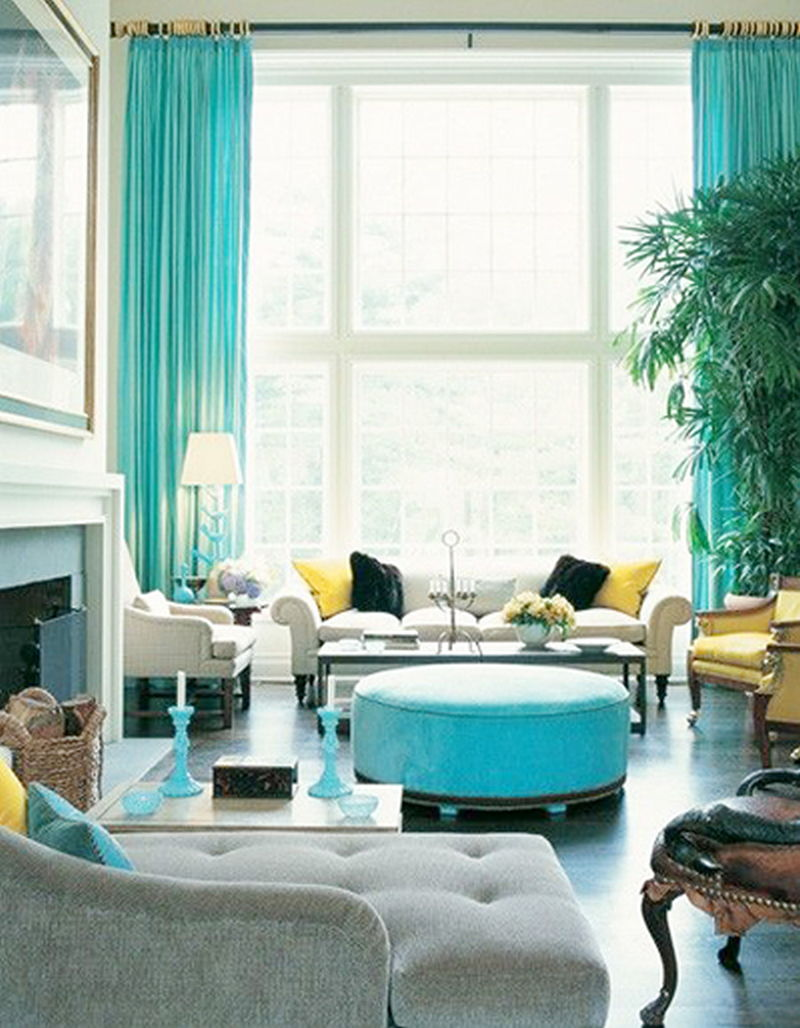 limpet-shell-living-room