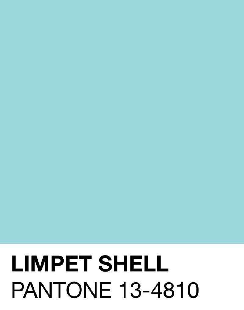 limpet-shell-pantone