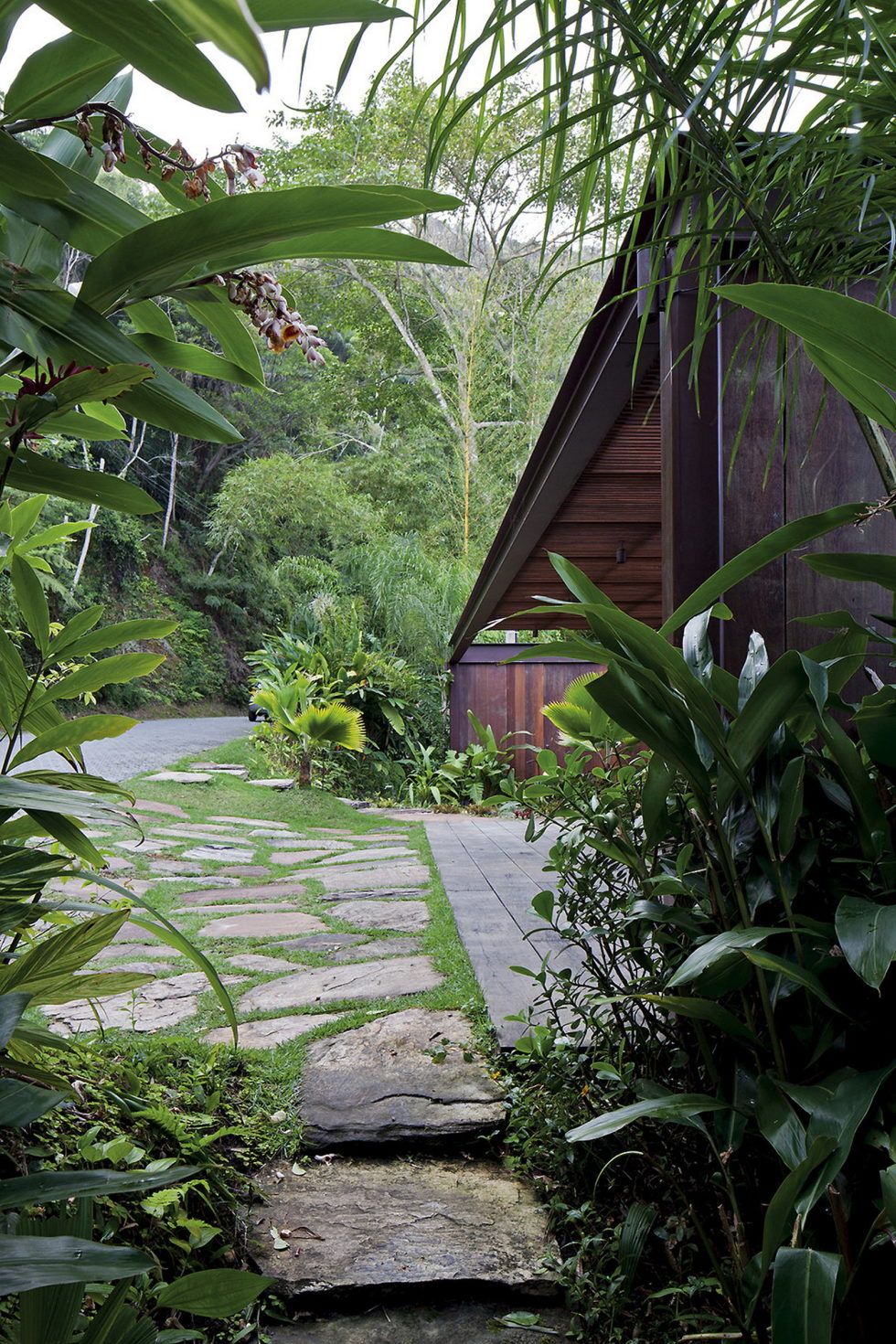 the-residence-in-the-tropical-forest-brazil-10
