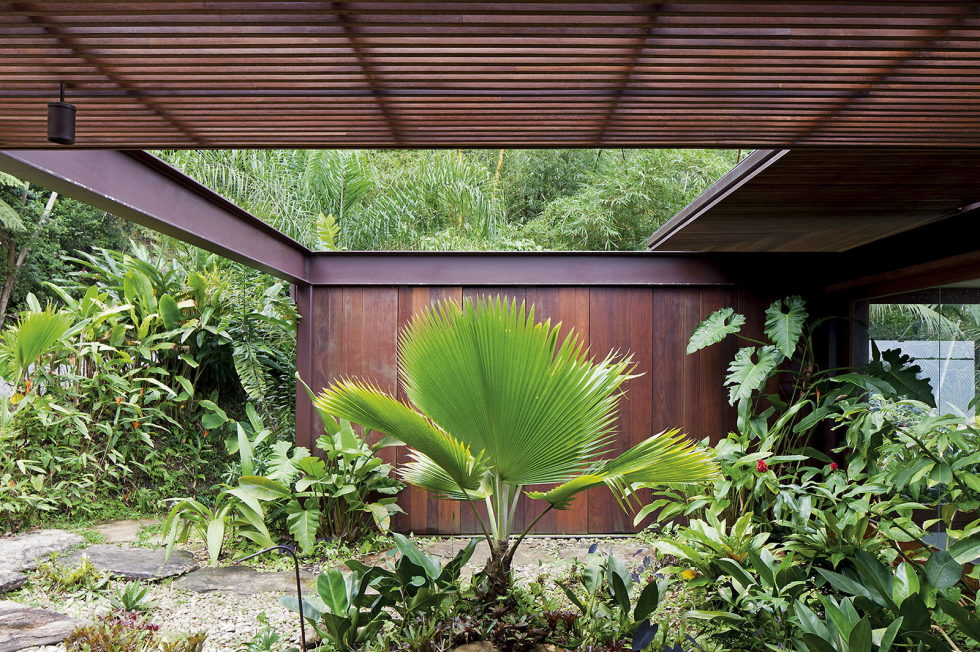 the-residence-in-the-tropical-forest-brazil-8