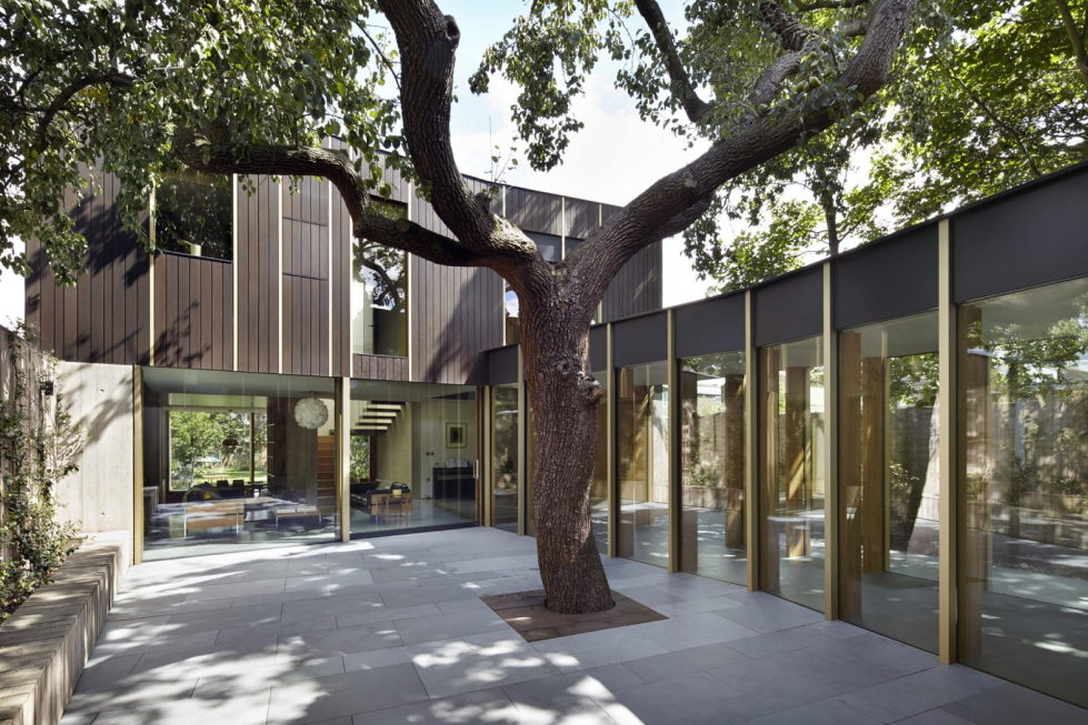 Pear Tree House The Around The Tree Residence in London by Edgley Design1