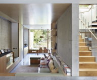 Pear Tree House The Around The Tree Residence in London by Edgley Design6